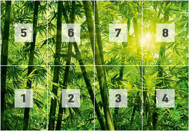 Bamboo forest wall mural buy at europosters for Bamboo forest wall mural wallpaper