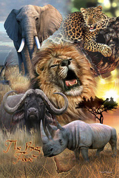 African big five Affiche