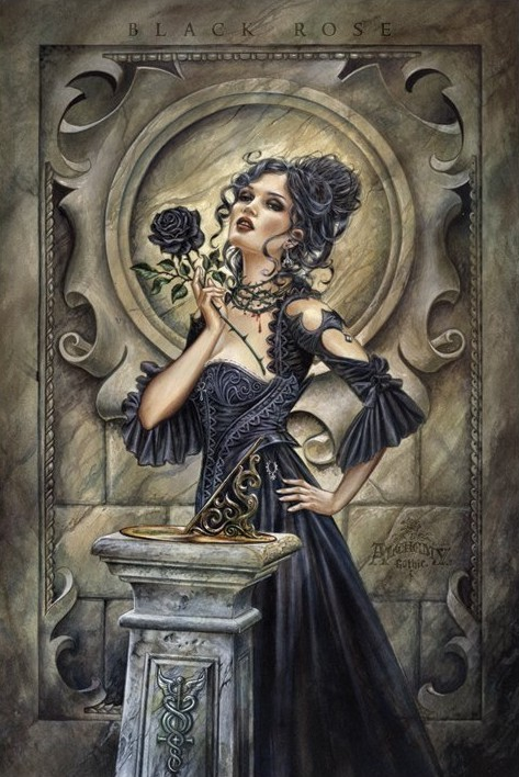 Alchemy - black rose Affiche
