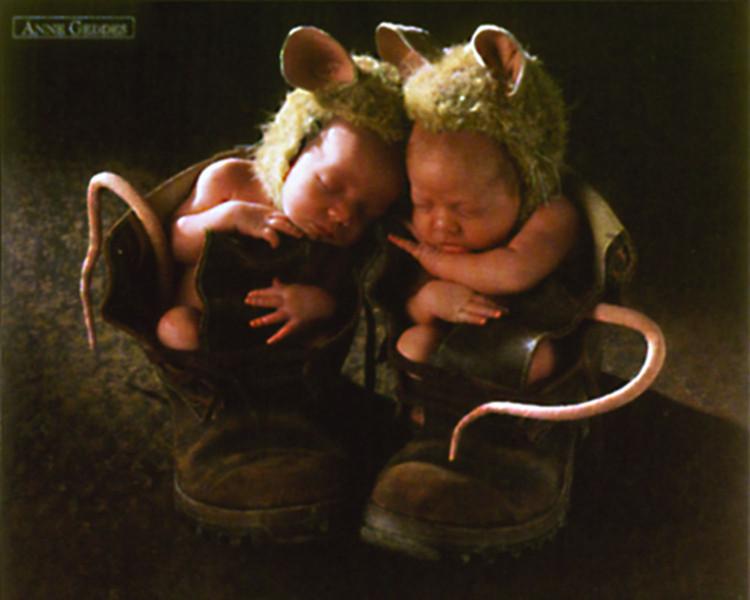 Anne Geddes - mice Poster