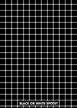 Black or white spots? Affiche