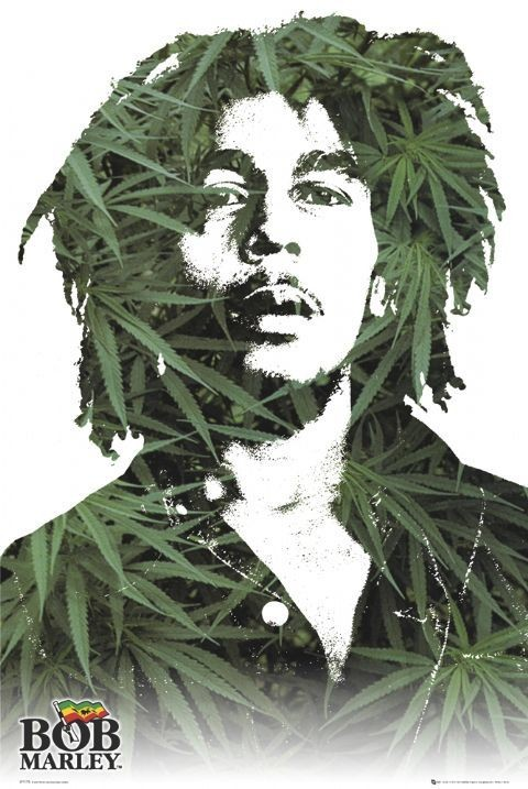 Bob Marley - leaves Affiche