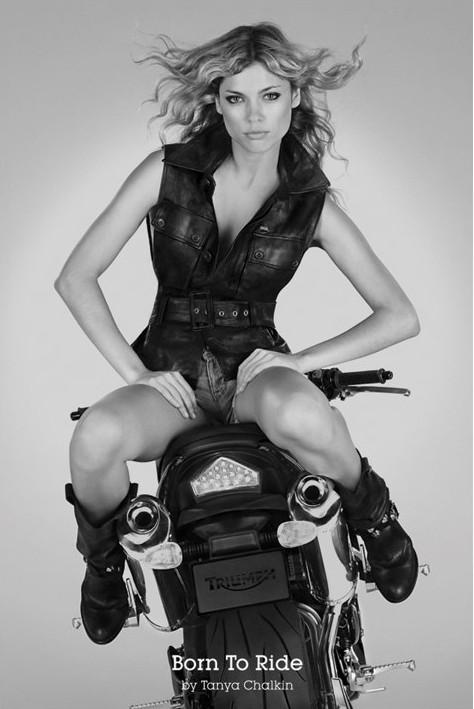 Bron to ride - Tanya Chalkin Affiche