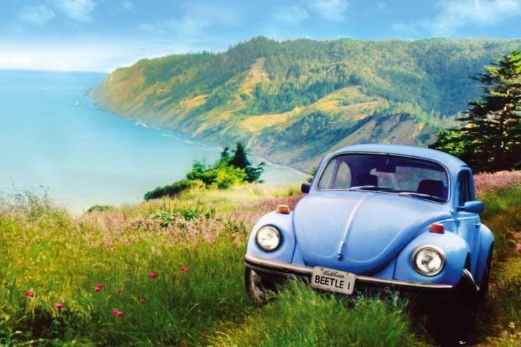 California - beetle Affiche