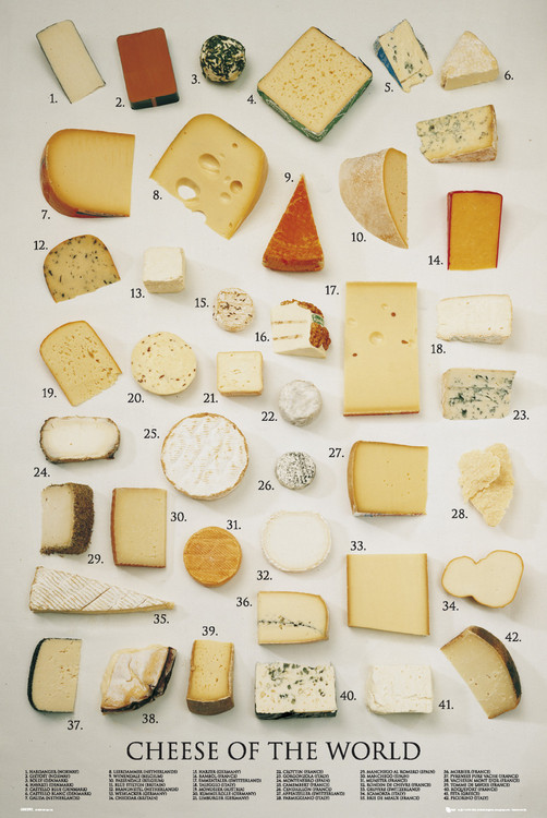 Cheeses of the world Affiche
