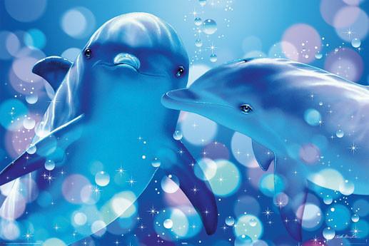 Christian R. Lassen - kissing dolphins Affiche