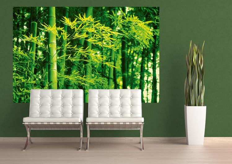 DAVE BRÜLLMANN - bamboo in spring Affiche