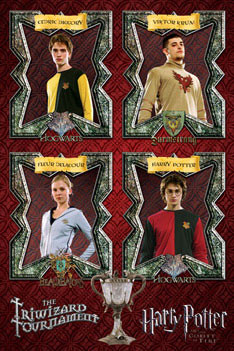 HARRY POTTER 4 - triwizard tournament Affiche