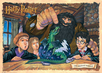 HARRY POTTER - birth of norb. Affiche