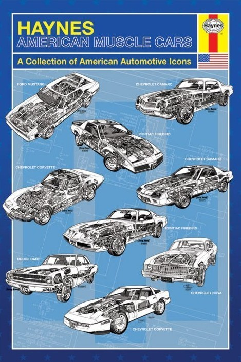 Haynes - american muscle cars Affiche