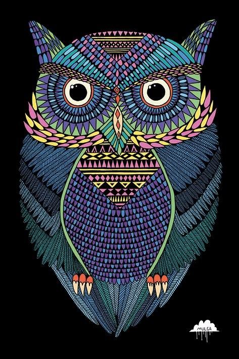 Hibou - Mulga Affiche