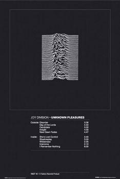 Joy Division - unknown pleasure Affiche