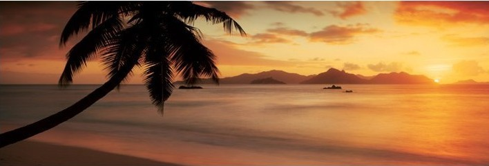 La digue - seychelles Affiche