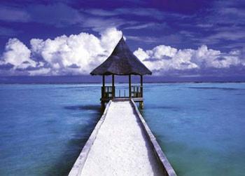 Maledives - hut Affiche