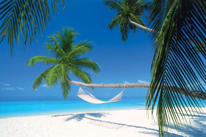 Maledives island - Hammock Affiche