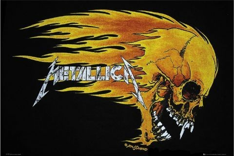 Metallica - flaming skull Affiche