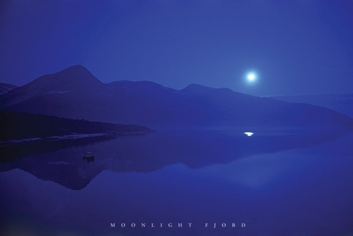 Moonlight fjord Affiche