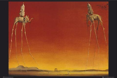 Salvador Dalí – elephants Affiche