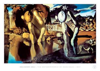 Salvador Dali - metamorphosis Affiche