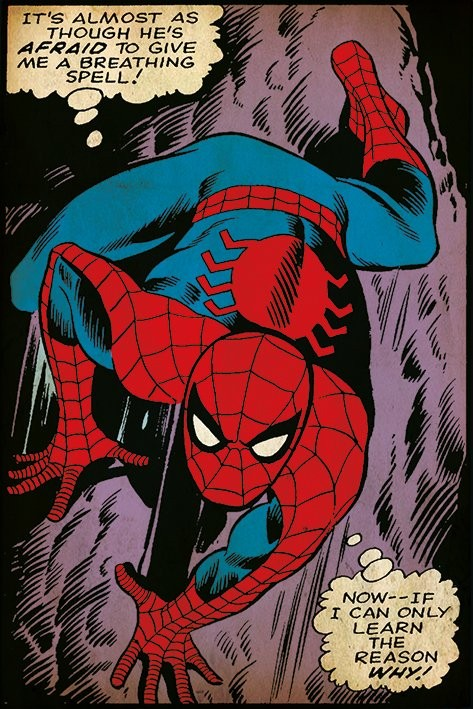 Spider-Man - Breathing Spell Affiche