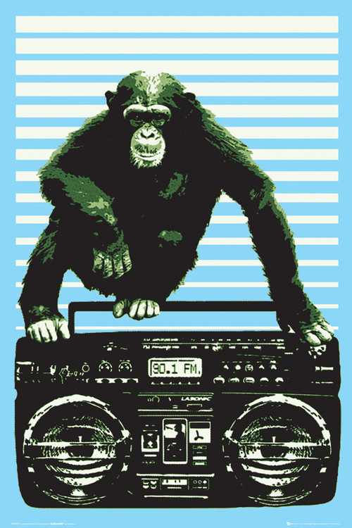 Steez - boombox and monkey Affiche