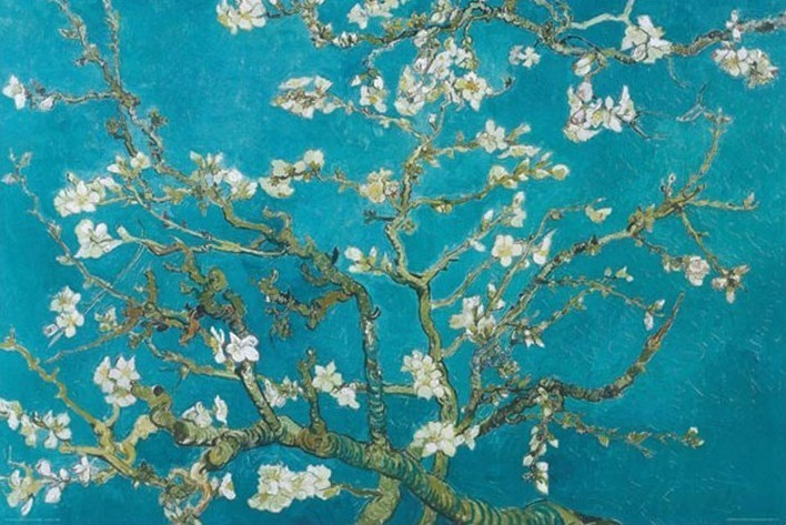 Vincent van Gogh - Almond Blossom Aan Remy 1890 Affiche