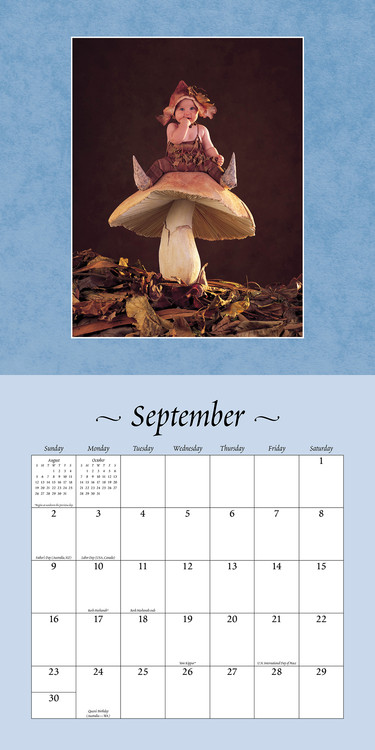 Calendario Anne Geddes 2021 Anne Geddes   Small is Beautiful   Wall Calendars | Large selection