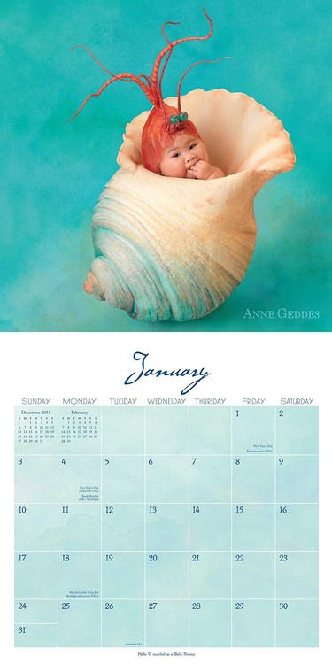 Calendario Anne Geddes 2021 Anne Geddes   Under the Sea   Wall Calendars | Large selection