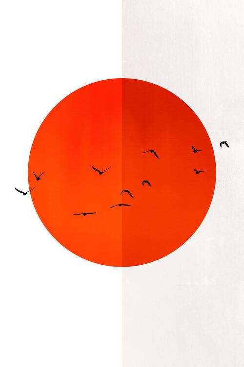 Illustration 13 Seagulls In The Sun
