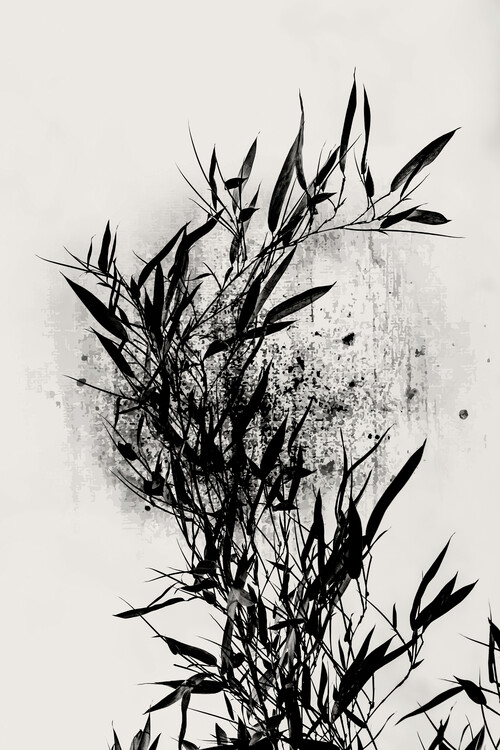 Illustration Always Bloom