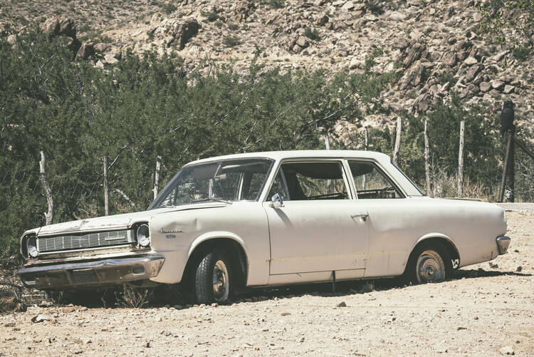 Art Photography American West - Old Rambler