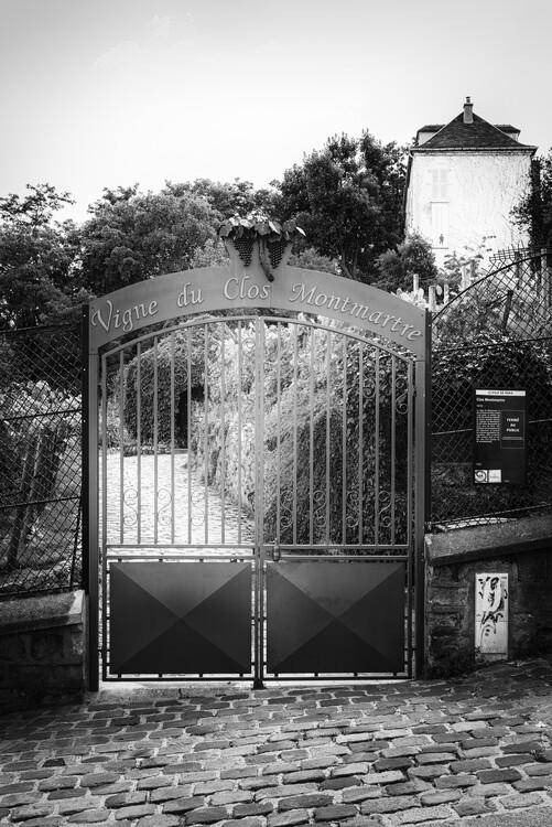 Art Photography Black Montmartre - Vigne Montmarte