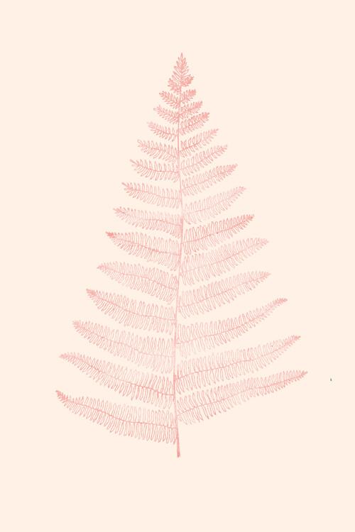 Illustration Botanica Minimalistica Rouge
