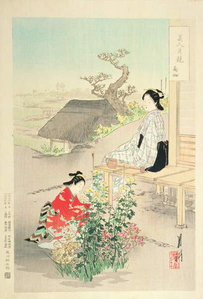 Fine Art Print 'Chrysanthemum Garden'