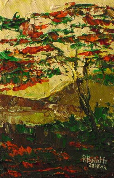 Fine Art Print Flamboyant en fleur, 2014
