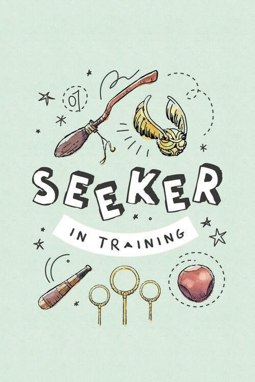 Poster Harry Potter - Apanhador em treinamento