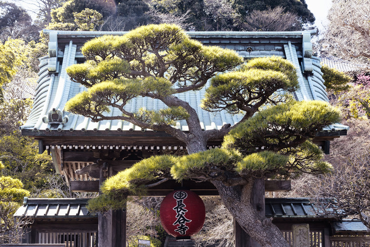 Art Photography Japonese Temple