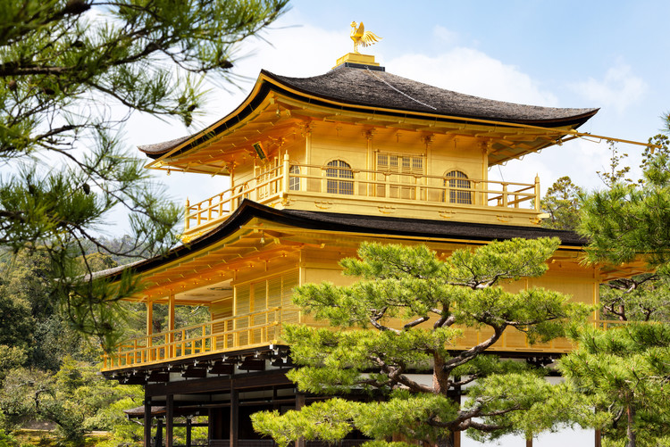 Art Photography Kinkaku-Ji Golden Temple II
