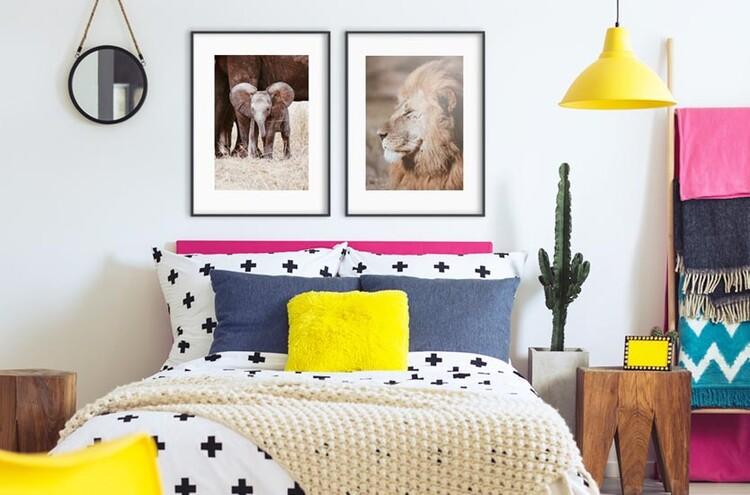 Art Photography Lion King