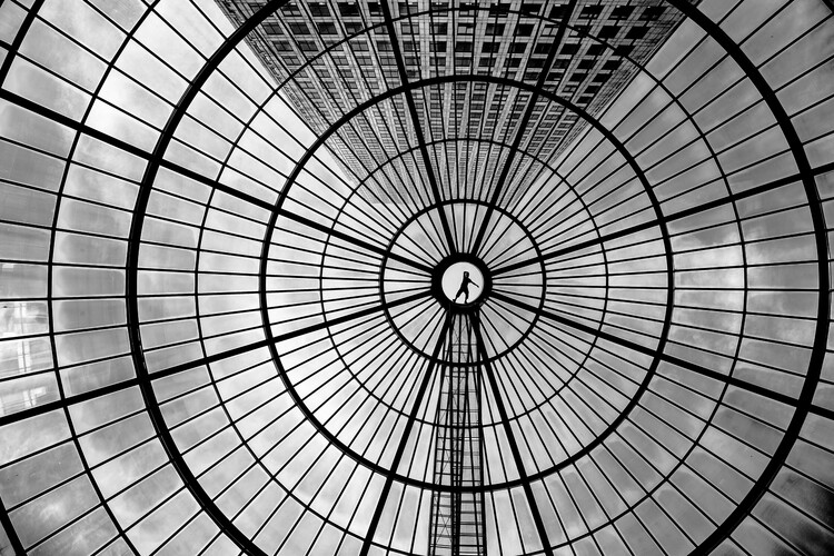 Art Photography Look up