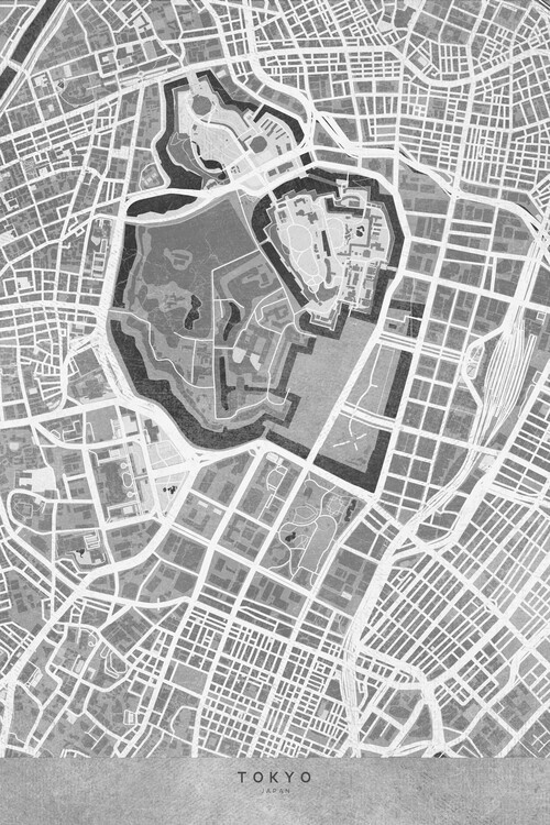 Map Map of Tokyo, Japan, in gray vintage style