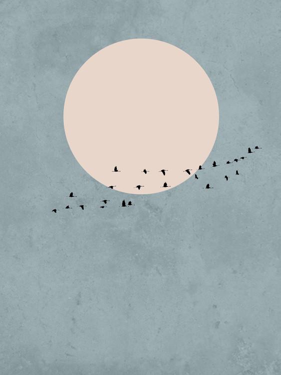 Kuva moonbird1