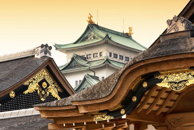 Art Photography Nagoya Castle at Sunset