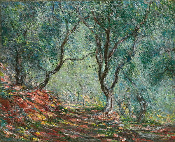 Fine Art Print Olive Trees in the Moreno Garden; Bois d'oliviers au jardin Moreno