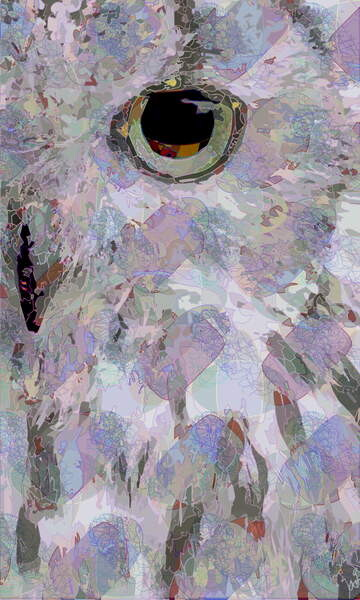 Fine Art Print Owl3