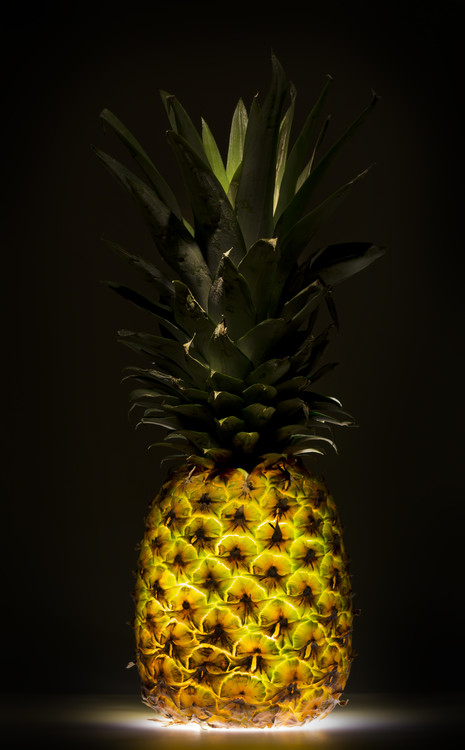 Art Photography Pineapple