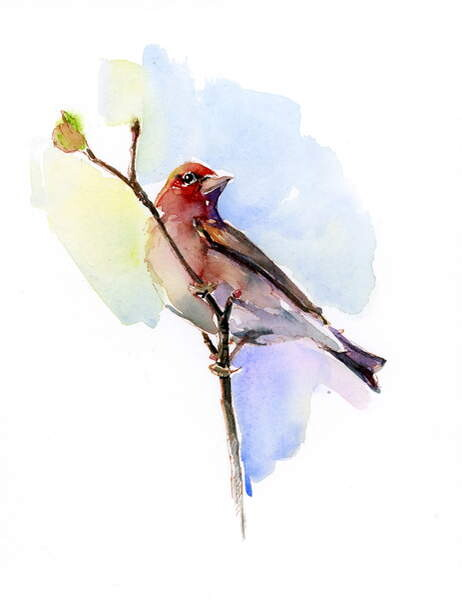Purple Finch 2016 Reproductions Of Famous Paintings For Your Wall