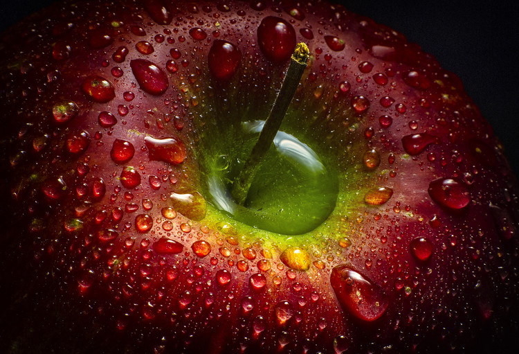 Art Photography Red Apple