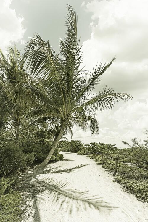 Art Photography Sanibel Island | Vintage
