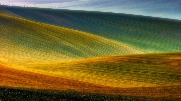 Art Photography Spring fields